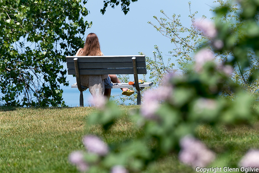 "Brights Grove artist Emma Crossland, is surrounded by huge lilacs while sketching the landscape overlooking Lake Huron at Mike Weir Park. ""I enjoy being here,"" she said as the fragrance of the lilacs filled the air."
