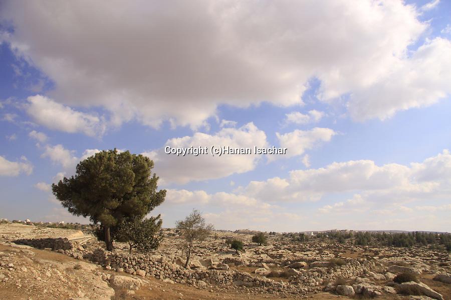 Israel, Shephelah, Tel Beit Mirsim was excavated (1926?32) by W.F. Albright
