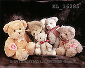 Interlitho, Alberto, CUTE ANIMALS, teddies, photos, teddiefamily(KL16285,#AC#)