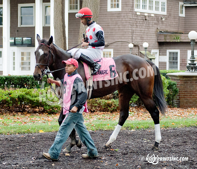 Onepointhreecarats before The Justakiss Stakes at Delaware Park on 10/7/13