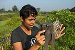 Fishing Cat (Prionailurus viverrinus) biologist, Anya Ratnayaka, setting up camera trap in urban wetland, Urban Fishing Cat Project, Diyasaru Park, Colombo, Sri Lanka