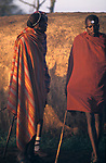 Maasai moran the week of their initiation into manhood.  <br /> They have stayed in this manyatta for several weeks with his age set.