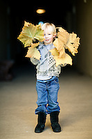 Boy Playing With Leaves