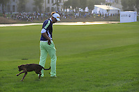 Stray dog takes a shine to Marcel Siem (GER) on the 18th hole during Sunday's Final Round of the 2014 BMW Masters held at Lake Malaren, Shanghai, China. 2nd November 2014.<br /> Picture: Eoin Clarke www.golffile.ie