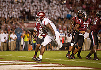 Hawgs Illustrated/BEN GOFF <br /> David Williams, Arkansas running back, runs in for a touchdown in the fourth quarter against South Carolina Saturday, Oct. 7, 2017, during the game at Williams-Brice Stadium in Columbia, S.C.