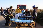 Pescadero State Beach, rescue
