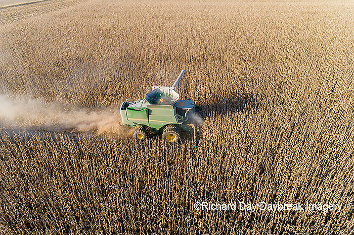 63801-13102 Harvesting corn in fall-aerial  Marion Co. IL