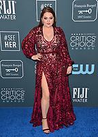 SANTA MONICA, USA. January 12, 2020: Lauren Ash at the 25th Annual Critics' Choice Awards at the Barker Hangar, Santa Monica.<br /> Picture: Paul Smith/Featureflash