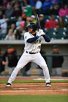 Left fielder Tim Tebow (15) of the Columbia Fireflies in a game against the Augusta GreenJackets on Opening Day, Thursday, April 6, 2017, at Spirit Communications Park in Columbia, South Carolina. Columbia won, 14-7. (Tom Priddy/Four Seam Images)
