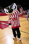University of Wisconsin mascot Bucky Badger during the Butler game at the Kohl Center in Madison, WI, on 1/30/01. Butler beat Wisconsin 58-44. (Photo by David Stluka)