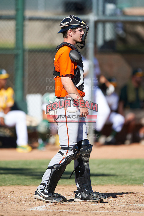 San Francisco Giants minor league catcher Ben Turner #13 during an instructional league game against the Oakland Athletics at the Papago Park Baseball Complex on October 17, 2012 in Phoenix, Arizona. (Mike Janes/Four Seam Images)