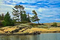 Pine trees on growing on precambrian Shield rock in Georgian Bay.<br />