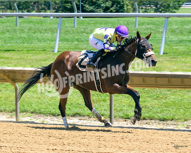 Beautiful Maiden winning at Delaware Park on 7/3/17