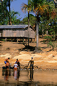 Rio Negro, Brazil. Caboclo fishermen pulling in the nets on a river beach below their house; Amazonas State.