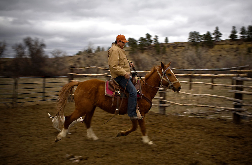 "Regis Hogan, 30, attempts to break a wild horse on his land near Lodge Grass, MT along the Crow Indian Reservation. ""It takes awhile to break them,"" said Hogan as he circled around on the skiddish horse. ""With some love and persistences the wild ones end up being the best you could have."""