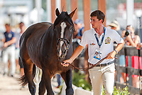 BEL-Nicola Philippaerts presents H&M Chilli Willi during the 2nd Horse Inspection for the FEI World Individual Jumping Championships. 2018 FEI World Equestrian Games Tryon. Saturday 22 September. Copyright Photo: Libby Law Photography