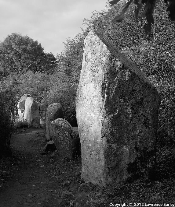 A cluster of megaliths in Erdeven in the early morning sun.