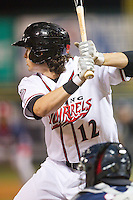 Jarrett Parker (12) of the Richmond Flying Squirrels at bat against the New Hampshire Fisher Cats at The Diamond on June 13, 2014 in Richmond, Virginia.  The Fisher Cats defeated the Flying Squirrels 6-3.  (Brian Westerholt/Four Seam Images)