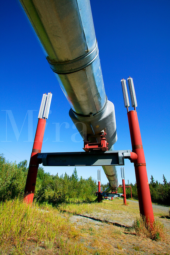 Trans-Alaska Pipeline, Copper River Valley, Alaska
