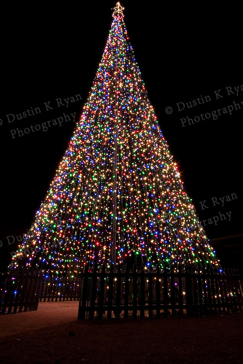 Light Christmas Tree Marion Square Charleston South Carolina holiday lights