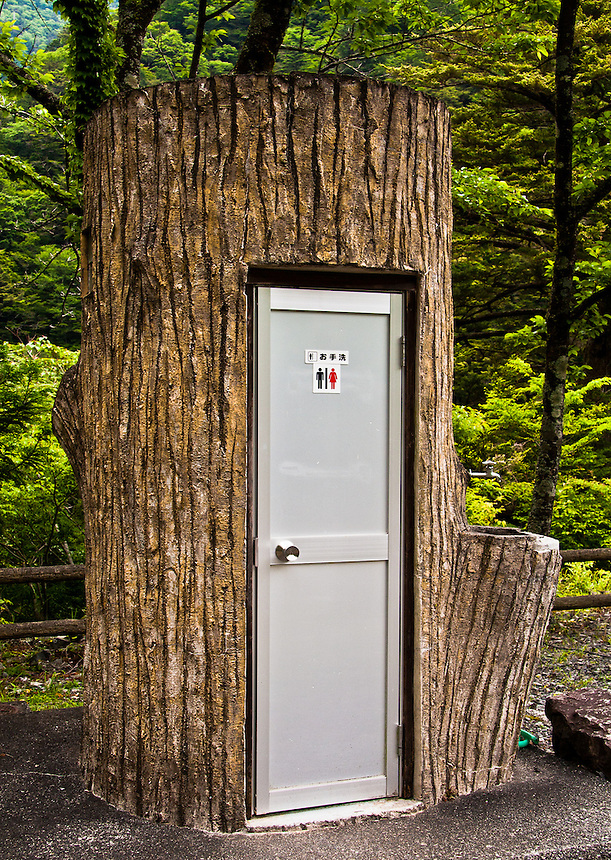 An environmentally friendly outdoor toilet is shaped like a tree.