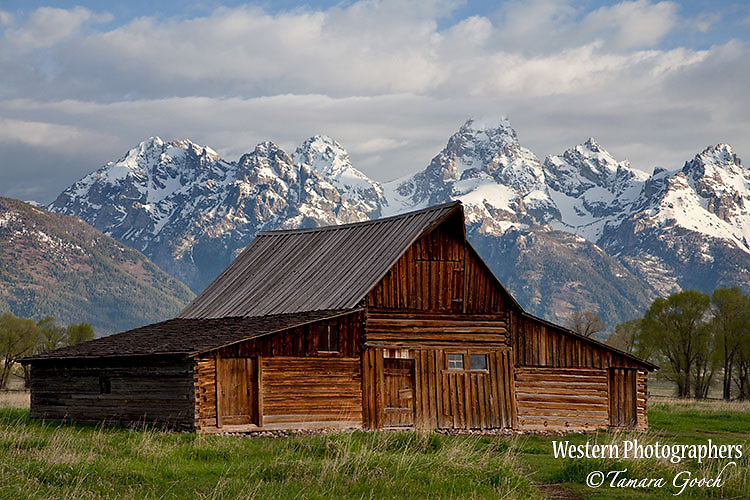 A photo of an old barn in Grand Teton National Park.