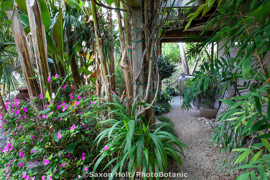 Arbor covering path in Sherry Merciari garden of foliage plants