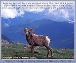 John leads Rocky Mountain National Park wildlife tours.<br />
