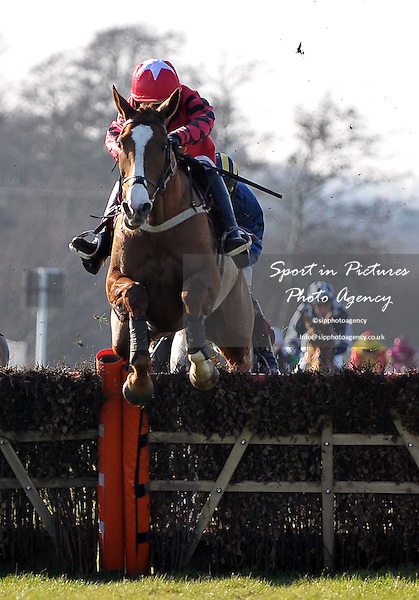 Race winner A Little Swifter?ridden by Alex Merriam jumps the last. Race 2. ladbrokes.com Mares¥ Novices¥ Hurdle. Kent National Day. Folkestone Racecourse. Folkestone. Kent. 29/02/2012. MANDATORY Credit Garry Bowden/Sportinpictures - NO UNAUTHORISED USE - 07837 394578