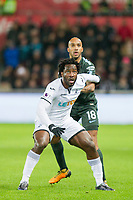 Wilfried Bony of Swansea City and Fabian Delph of Manchester City tussle during the EPL - Premier League match between Swansea City and Manchester City at the Liberty Stadium, Swansea, Wales on 13 December 2017. Photo by Mark  Hawkins / PRiME Media Images.