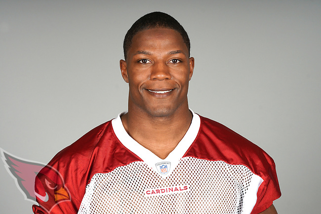This is a 2015 photo of David Johnson of the Arizona Cardinals NFL football team.  This image reflects the Cardinals active roster as of 6/8/15 when this image was taken.  (AP Photo)