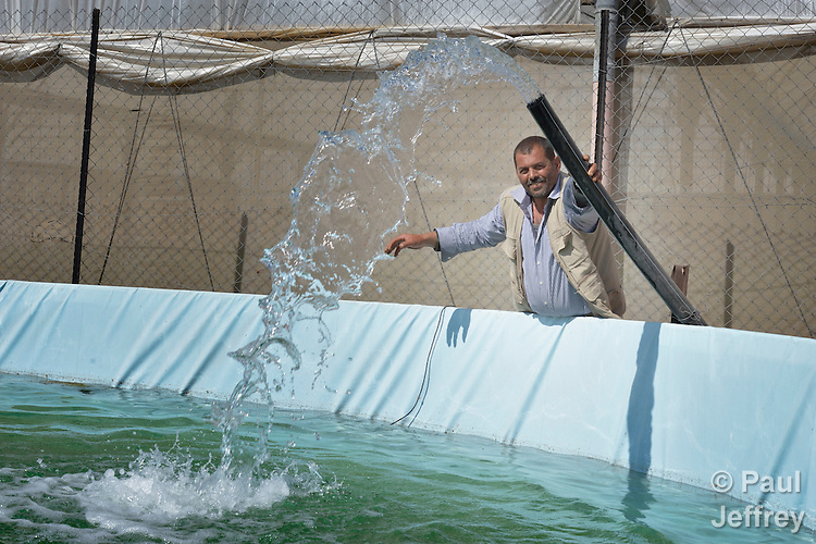 Abdulah Sliman fills his water storage tank in Al Fukari, Gaza. The farmer grows vegetables in several greenhouses, and uses a catchment system to capture the rainwater that falls on the greenhouses. That water he mixes with increasingly saline groundwater he pumps from a well. The system allows him to produce a greater quantity of more lucrative crops, at a greater profit because he isn't forced to buy as much water for irrigation. Sliman and several other farmers in the community received assistance in building the systems from Diakonie Katastrophenhilfe, a member of the ACT Alliance. In the wake of the devastating 2014 war, ACT Alliance members are supporting health care, vocational training, rehabilitation of housing and water systems, psycho-social care, and other humanitarian actions throughout the besieged Palestinian territory. Quality water is growing increasingly scarce in Gaza, as Israel drains the aquifer for its own development, pulling salt water into the aquifer from the west.