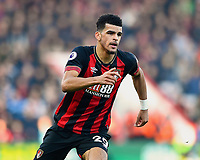 Dominic Solanke of AFC Bournemouth during AFC Bournemouth vs Wolverhampton Wanderers, Premier League Football at the Vitality Stadium on 23rd February 2019
