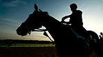ELMONT, NY - JUNE 08: Horses enter the track to exercise as horses prepare on Friday for the 150th running of the Belmont Stakes at Belmont Park on June 8, 2018 in Elmont, New York. (Photo by Scott Serio/Eclipse Sportswire/Getty Images)
