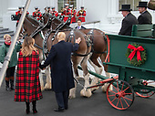United States President Donald J. Trump pets one of the horses as he and and First lady Melania Trump accept the White House Christmas tree on the North Driveway of the White House in Washington, DC on Monday, November 19, 2018. The 2018 White House Christmas Tree will arrive as in previous years by horse and carriage on the North Portico. The tree will be displayed in the Blue Room of the White House. <br /> Credit: Ron Sachs / CNP<br /> (RESTRICTION: NO New York or New Jersey Newspapers or newspapers within a 75 mile radius of New York City)