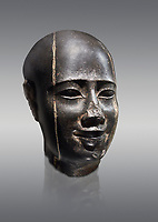 Ancient Egyptian statue bust of a male, graanodiorite, Late Period, (722-322 BC). Egyptian Museum, Turin. Grey background.  Grey background. Drovetti collection. Cat 3139