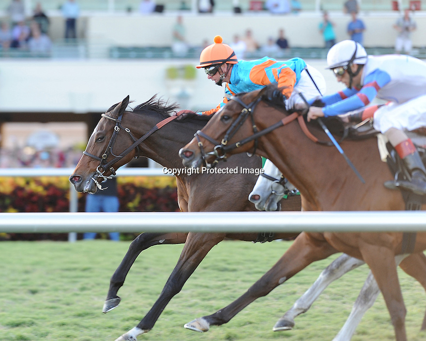 Heavenly Landing captures the Marshua's River stakes at Gulfstream Park on 1-7-12 nosing out La Reine Lionne and Tapitsfly.Ridden by Corey Lanerie