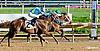 Lucky Sand winning at Delaware Park on 9/25/13