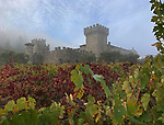 Castello di Amorosa was build nearly 20 years ago which sits on a hundred-seventy beautiful acres of forest and hills with a stream near Calistoga, CA.