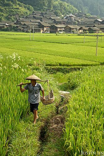 A farmer walking in a village near Dimen.