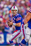 9 November 2014: Buffalo Bills quarterback Kyle Orton drops back looking for an open receiver against the Kansas City Chiefs at Ralph Wilson Stadium in Orchard Park, NY. The Chiefs rallied with two fourth quarter touchdowns to defeat the Bills 17-13. Mandatory Credit: Ed Wolfstein Photo *** RAW (NEF) Image File Available ***