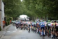 peloton<br /> <br /> GP Marcel Kint 2019 (BEL)<br /> One Day Race: Kortrijk – Zwevegem 188.10km. (UCI 1.1)<br /> Bingoal Cycling Cup 2019