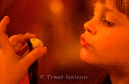 Nathaniel Nelson at Thanksgiving Dinner. 11.28.2002, 6:15:46 PM<br />