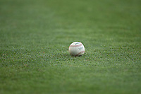 A Carolina League baseball sits on the grass behind home plate during the game between the Salem Red Sox and the Winston-Salem Dash at BB&T Ballpark on June 16, 2016 in Winston-Salem, North Carolina.  The Dash defeated the Red Sox 7-1.  (Brian Westerholt/Four Seam Images)
