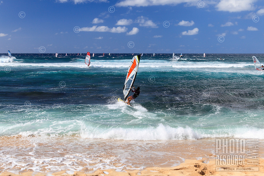 A windsurfer takes her windsurfing board out to sea from Ho'okipa Beach, Maui. (NOTE: the woman in the foreground is model released, the others are not model released.)