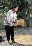 Chan Sy winnows rice in the Cambodian village of Solang Kandal.