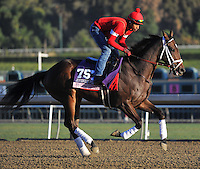 My Conquestadory , trained by Mark Casse, trains for the Breeders' Cup Juvenile Fillies at Santa Anita Park in Arcadia, California on October 30, 2013.