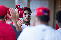 Orem Owlz third baseman Kevin Maitan (9) is congratulated by teammates in the dugout after hitting a home run during a Pioneer League game against the Ogden Raptors at Home of the OWLZ on August 24, 2018 in Orem, Utah. The Ogden Raptors defeated the Orem Owlz by a score of 13-5. (Zachary Lucy/Four Seam Images)