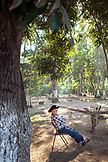MEXICO, San Pancho, San Francisco, La Patrona Polo Club, an older man sits underneath the shade of a tree as he waits for the polo matches to begin