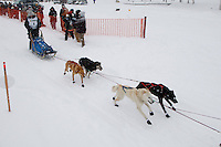 Cain Carter of Fairbanks leaves the start line of the 2009 Junior Iditarod on Knik Lake on Saturday Februrary 28, 2009.